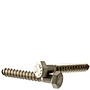 STAINLESS 18 8 HEX LAG SCREW