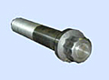 12-POINT FLANGE BOLT